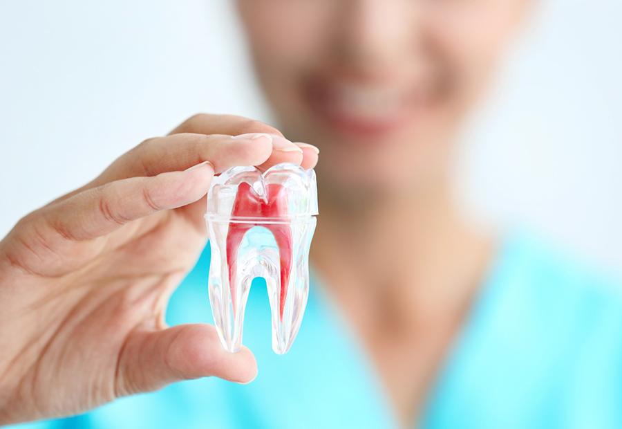 stomatoloska ordinacija dr mecava banja luka zubari zubar